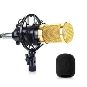 5. Mic thu âm giá rẻ Ami BM-800